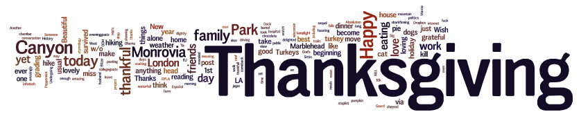 Word Cloud of Facebook and Twitter Feeds on Thanksgiving 2012